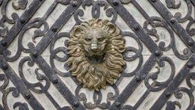 Metaalhoofd van leeuw op houten deur stock foto