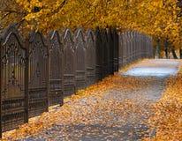 Metaalijzer, gesmeed rooster in het park, de herfstmening royalty-vrije stock foto