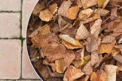 Metaalkom met bladeren (de herfst) Stock Foto's