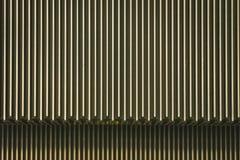 Metaaltrap van een roltrap Stock Fotografie