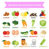 Metabolism booting foods, info graphic food, vegetable, fruit Stock Photography