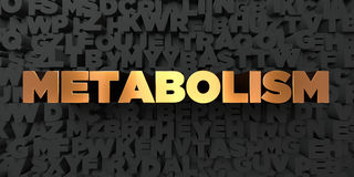 Metabolism - Gold text on black background - 3D rendered royalty free stock picture Royalty Free Stock Photography