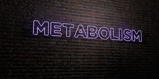 METABOLISM -Realistic Neon Sign on Brick Wall background - 3D rendered royalty free stock image. Can be used for online banner ads and direct mailers Stock Image