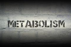 Metabolizmu słowo gr obrazy stock