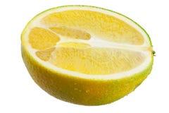 Metade da laranja Fotografia de Stock
