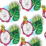 Metade sem emenda da cor do teste padrão do fruto do dragão com folhas fotografia de stock