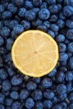 Metade suculenta do limão em um fundo do mirtilo Frutos do verão Mirtilo fresco como o fundo da textura e uma metade amarela do l Imagem de Stock