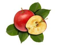 Metade vermelha e folhas de Apple Imagens de Stock Royalty Free