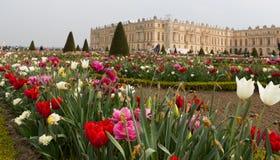 Metade Versailles trädgårdar och byggnad Royaltyfri Fotografi