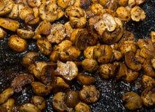Metades fritadas dos cogumelos dos cogumelos do close-up delicioso apetitoso do almoço dos chapéus dos vegetais fotos de stock