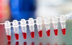 Metagenomics Stock Photo