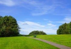 Metal ławka w krajobrazie łąka z zielonym drzewem i chmurnym niebieskim niebem Zdjęcie Stock