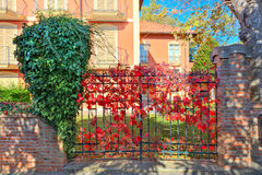 Metal строб покрытый с красной лозой в малом итальянском городке. Стоковое Фото