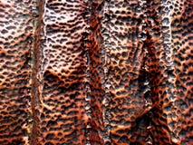 Metal текстура для предпосылки Стоковые Фотографии RF