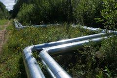 Metal трубы различного рафинадного завода топлива диаметров яркого, Стоковые Фото