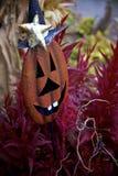 Metal украшение двора тыквы с большими чокнутыми белыми зубами и Witch& x27; шляпа s скрывается в фиолетовых заводах Стоковые Изображения RF