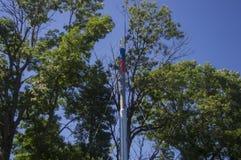 Metal цвета трубы русского флага в старухах деревьев Стоковые Фотографии RF