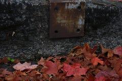 Metal aherrumbrado en la acera con las hojas del follaje de otoño en la tierra fotos de archivo