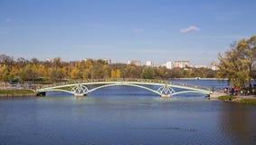 Metal arch bridge across the pond Royalty Free Stock Photos