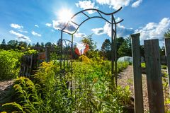 Metal arch and wooden fence as the gateway to a community garden royalty free stock photography