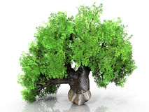 Metal baobab. Green tree on a white background Stock Photos