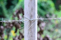 Metal barb fence with cement pole for protect danger area Royalty Free Stock Images