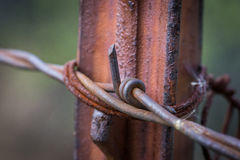Metal Barb on Fenceposts Stock Images
