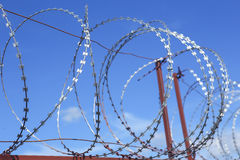 Metal barbed wire Stock Image