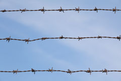 Metal barbed wire with blue sky Stock Photos