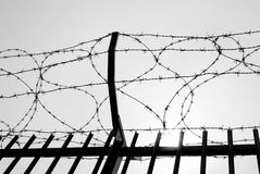 Barbed wire in a military area. Metal barbed wire of an enclosure military zone royalty free stock image