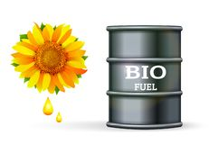 Metal barrel with bio fuel and drop oil of sunflower on white. Background vector. Biofuel plants concept vector illustration