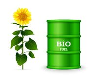 Metal barrel with bio fuel and sunflower isolated on white stock illustration