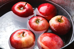 Metal basin with apples in water. Autumn harvest background Stock Image