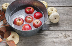 Metal basin with apples in water. Autumn harvest background Stock Photography