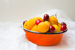 Metal basket full of apricots and cherries Royalty Free Stock Image