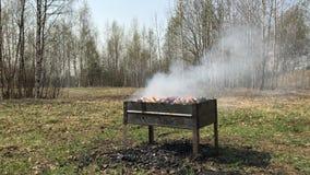 Metal bbq brazier with smoke stock footage
