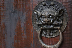 Metal beast head on the door panels in Phoenix Town, china Royalty Free Stock Photography