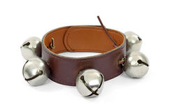 Metal bells on leather collar Stock Photo