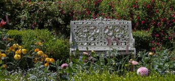 A metal bench in a flower bed. A metal iron bench seat set in a flower bed of lavender and roses english country garden Royalty Free Stock Photos
