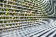 Metal bench grid on the autumn birch trees background mannheim royalty free stock photography