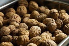Metal bin of whole walnuts. In the shell Stock Photo