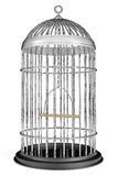 Metal Bird Cage Stock Photography