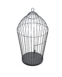 Metal bird cage  on white background. 3d rendering Royalty Free Stock Photo