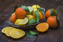 Metal bowl with citrus fruits on bamboo table. A metal bowl with handles filled with a variation of citrus fruits - oranges, lemons, limes, tangerines with plant royalty free stock photography
