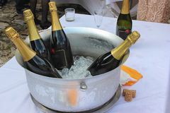 Metal bowl filled with ice and wine bottles stock photo