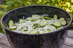 Metal bowl with sliced pickles Stock Images