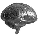 Metal brain Royalty Free Stock Image