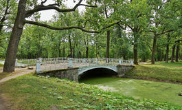 Metal bridge over the channel overgrown with green duckweed Royalty Free Stock Photo