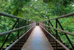 Metal bridge. To the wood Stock Image