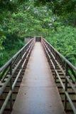 Metal bridge. To the wood Stock Photography